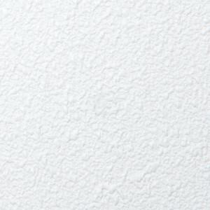 Agnes plafondplaten FR wit stuc 600x1200 mm